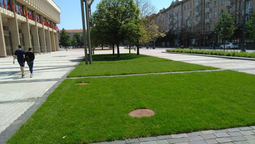 Vejos Klojimas Vilnius